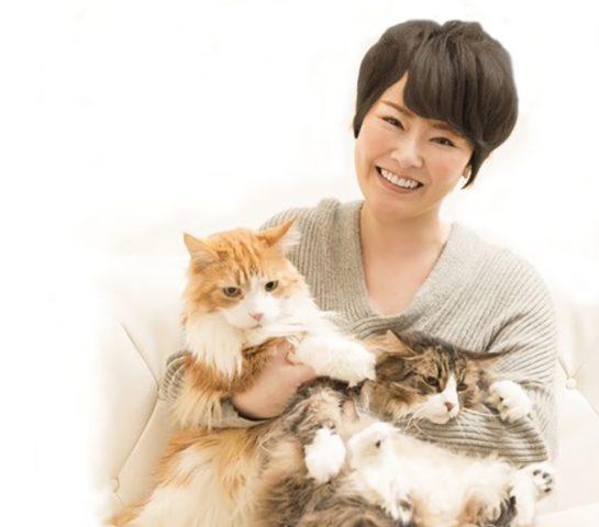 NHK朝ドラ女優Bは誰?槇原敬之と奥村秀一をつないだのは遠野なぎこ?