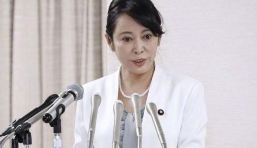 【画像】森雅子大臣の二重の目は整形?若い頃と比較!口裂け女の声も?