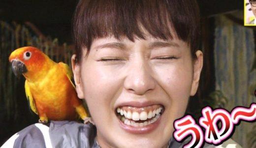【画像】戸田恵梨香は歯肉を手術した?いつから歯茎キレイになったか検証!